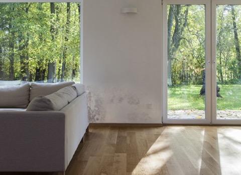 moisissure dans la maison solutions causes et cons quences. Black Bedroom Furniture Sets. Home Design Ideas