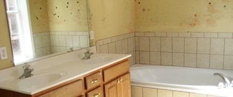 Salle de bain humide