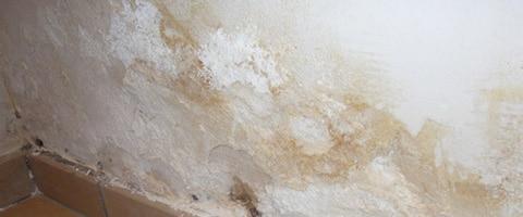 mur-humide-remontées-capillaire-devis-salpetre-quimper-concarneau-douarnenez-fouesnant-quimperle