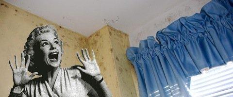 humidit dans murs et conseils de lutte humidite. Black Bedroom Furniture Sets. Home Design Ideas